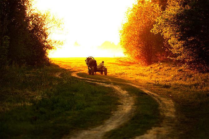 Peisaje dintr-o vara nesfarsita, de Denis Bodrov - Poza 7
