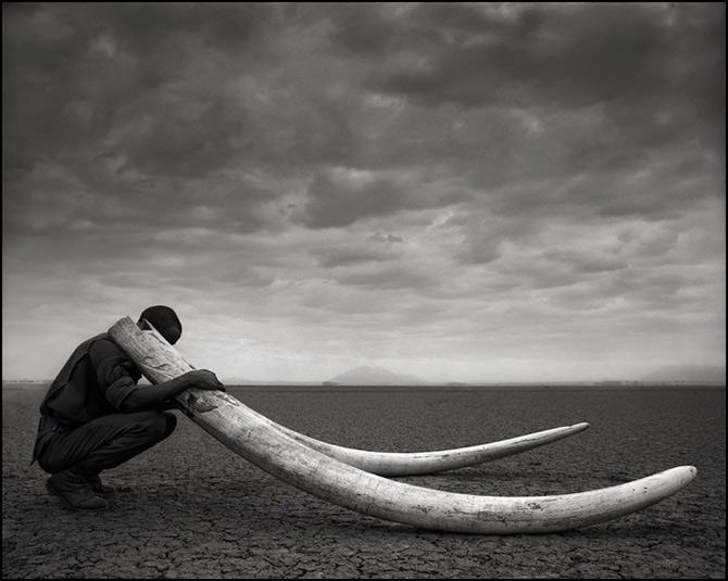 Recurs la Africa, de Nick Brandt - Poza 1