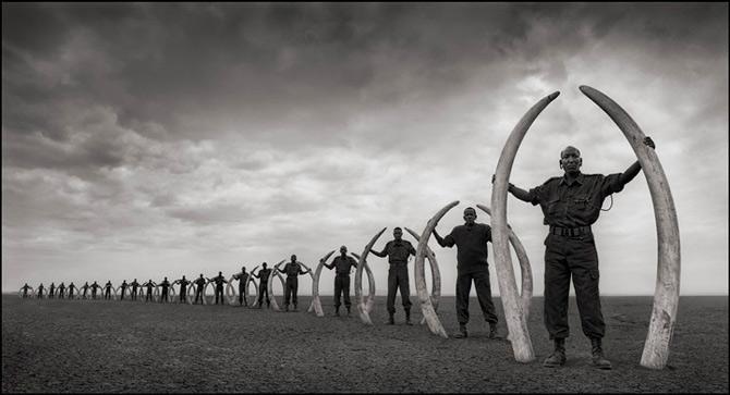 Recurs la Africa, de Nick Brandt - Poza 2