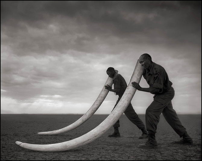 Recurs la Africa, de Nick Brandt - Poza 5