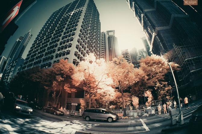 Post-New York la Hong Kong cu Yiu Yu Hoi - Poza 20