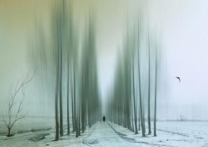 Peisaje abstracte cu siluete, de Josh Adamski - Poza 9