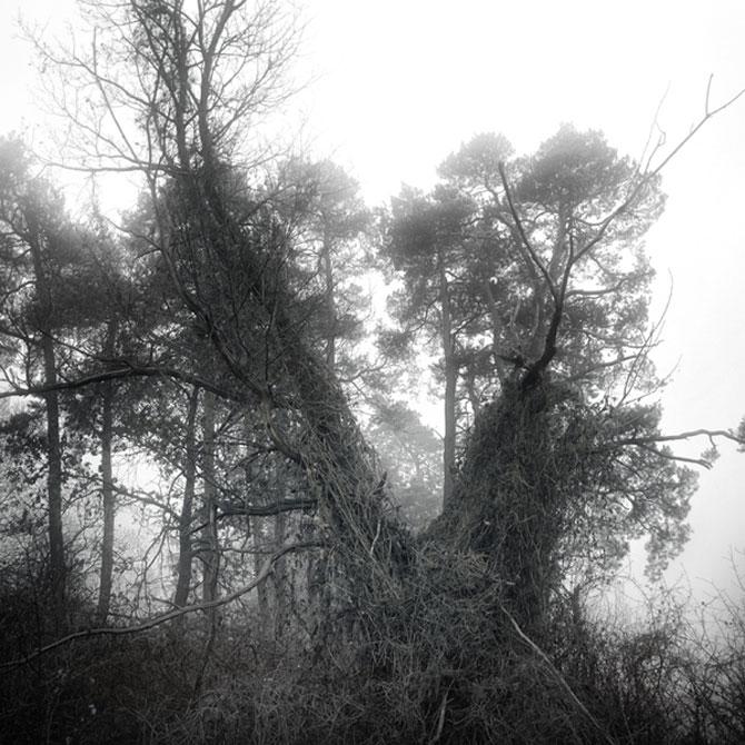 Foto-concept minimal monocrom - Poza 7