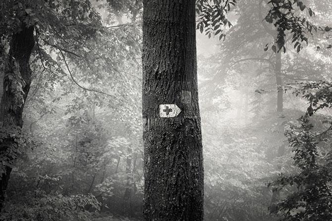Foto-concept minimal monocrom - Poza 23