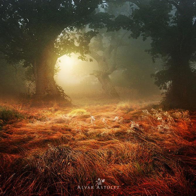 15 feerii in imagini, de Alvar Astulez - Poza 3