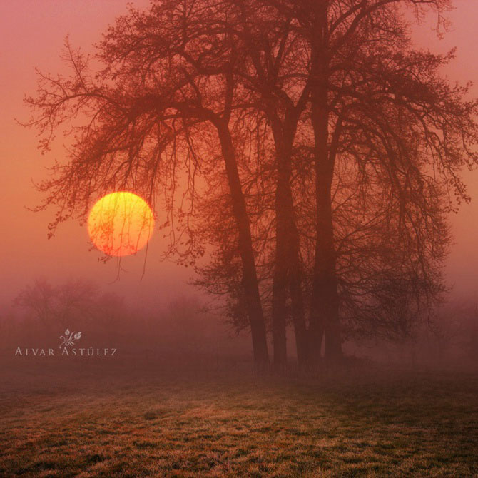 15 feerii in imagini, de Alvar Astulez - Poza 4