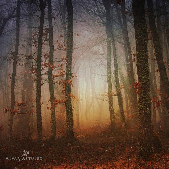 15 feerii in imagini, de Alvar Astulez - Poza 11