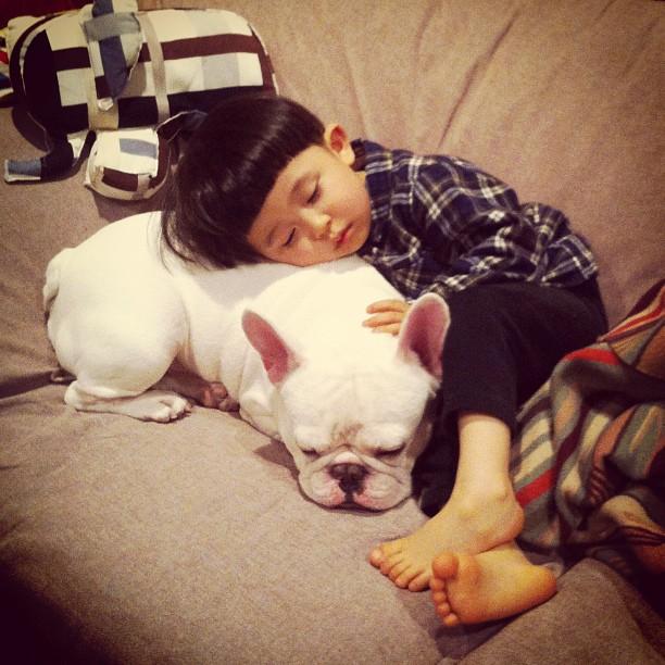Baietelul si cel mai bun prieten al sau: bulldogul francez - Poza 1