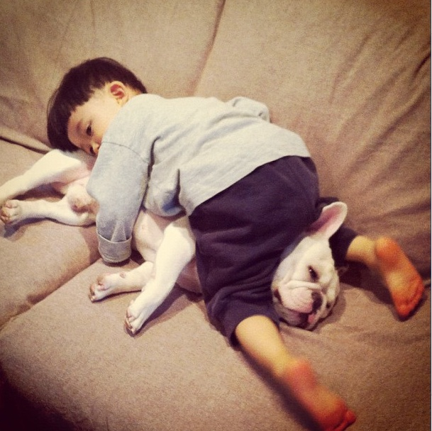 Baietelul si cel mai bun prieten al sau: bulldogul francez - Poza 5