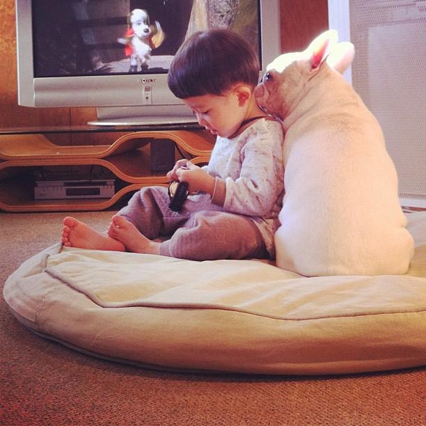 Baietelul si cel mai bun prieten al sau: bulldogul francez - Poza 8