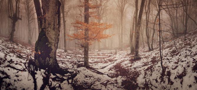 Locul unde frumusetea devine tangibila: Crimeea lui Daniel Korzhonova - Poza 2