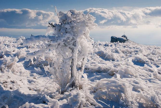 Locul unde frumusetea devine tangibila: Crimeea lui Daniel Korzhonova - Poza 23