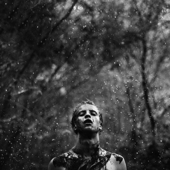 Fotograful David Talley a ratacit 365 de zile prin padure - Poza 3