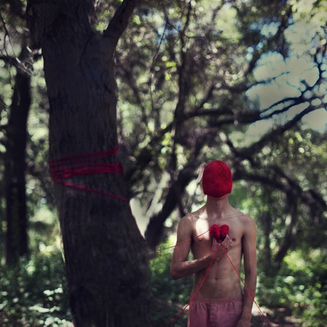 Fotograful David Talley a ratacit 365 de zile prin padure - Poza 12