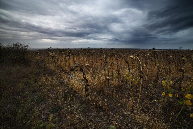 Pe drumuri nesfarsite, cu Denis Bodrov - Poza 2