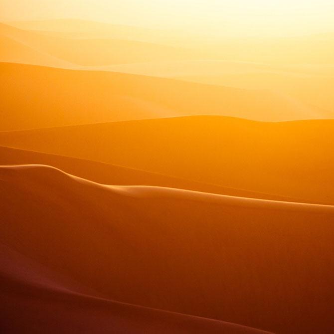 Frumusete in desert, cu Shawn van Eeden - Poza 1