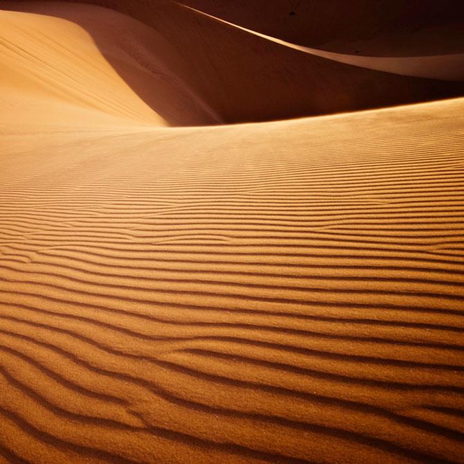 Frumusete in desert, cu Shawn van Eeden - Poza 4