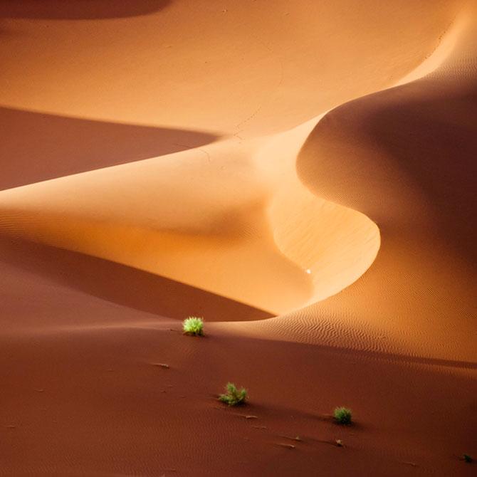 Frumusete in desert, cu Shawn van Eeden - Poza 5