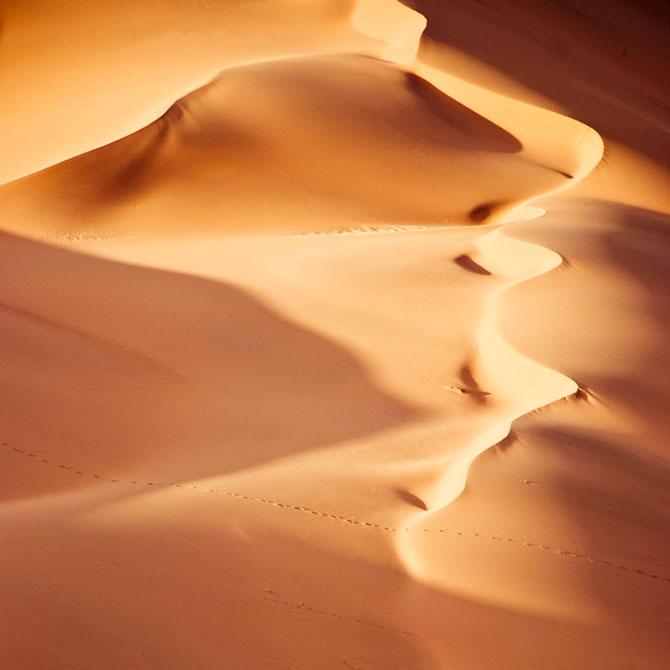 Frumusete in desert, cu Shawn van Eeden - Poza 8