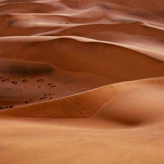 Frumusete in desert, cu Shawn van Eeden - Poza 9
