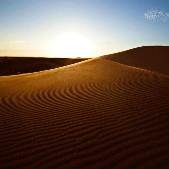Frumusete in desert, cu Shawn van Eeden - Poza 10