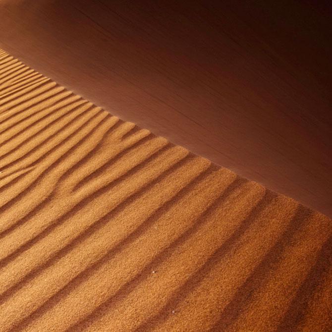 Frumusete in desert, cu Shawn van Eeden - Poza 11