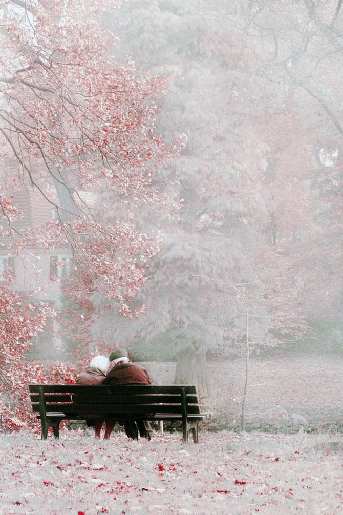 A te lasa in voia naturii, cu Dream-traveler - Poza 10