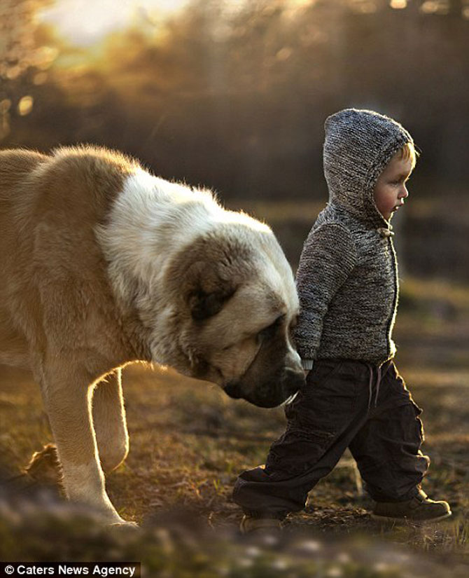 Superba prietenie dintre copiii si animalele Elenei Shumilova - Poza 2