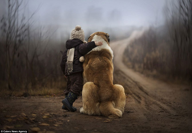 Superba prietenie dintre copiii si animalele Elenei Shumilova - Poza 7
