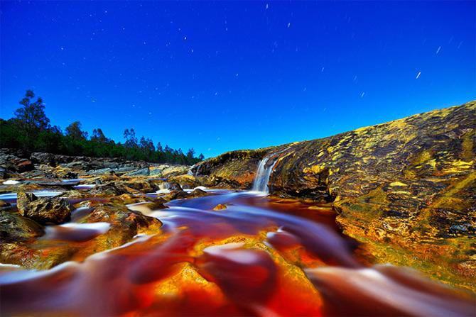 Culorile nebanuite ale naturii de Francisco Mingorance - Poza 1