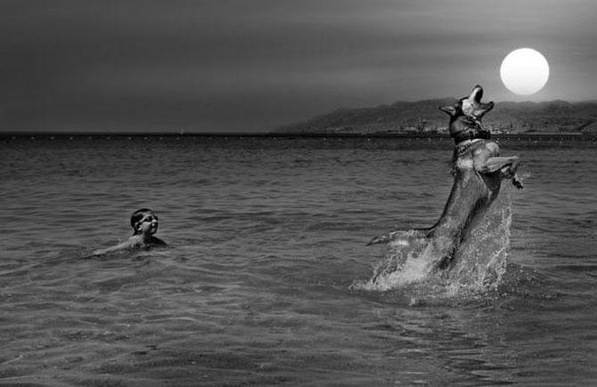 Frumusetea lucrurilor marunte, via Gilad Benari - Poza 12
