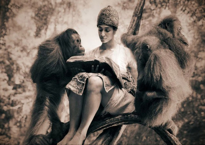 Copii, animale si iubire, de Gregory Snow - Poza 2