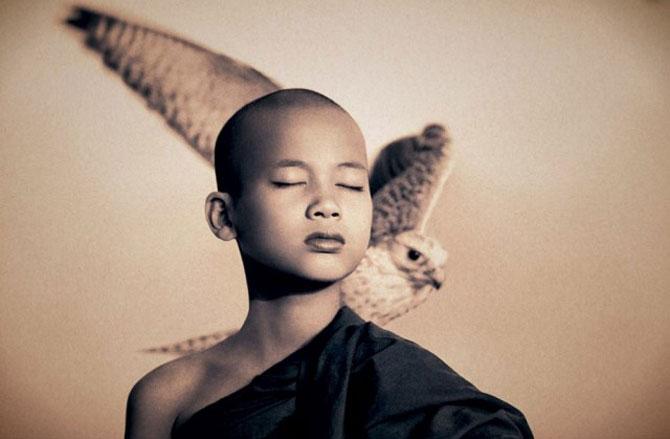 Copii, animale si iubire, de Gregory Snow - Poza 7