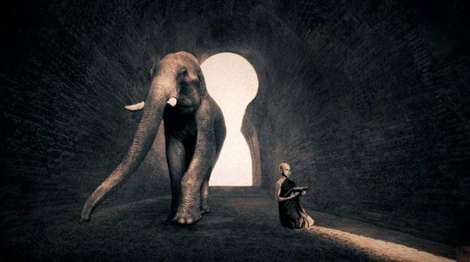 Copii, animale si iubire, de Gregory Snow - Poza 11