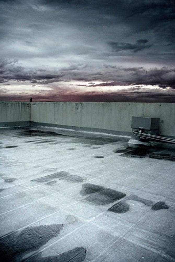 Cerul si pamantul lui Johann Ryno de Wet - Poza 5