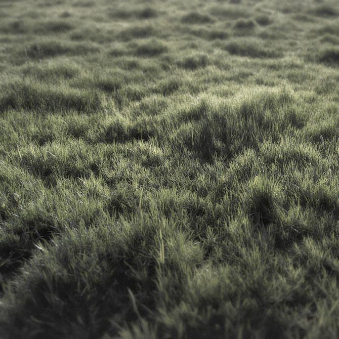 Minimal, conceptual, natural: Jurgen Heckel - Poza 1