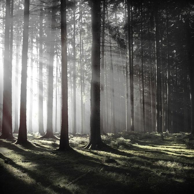 Minimal, conceptual, natural: Jurgen Heckel - Poza 5