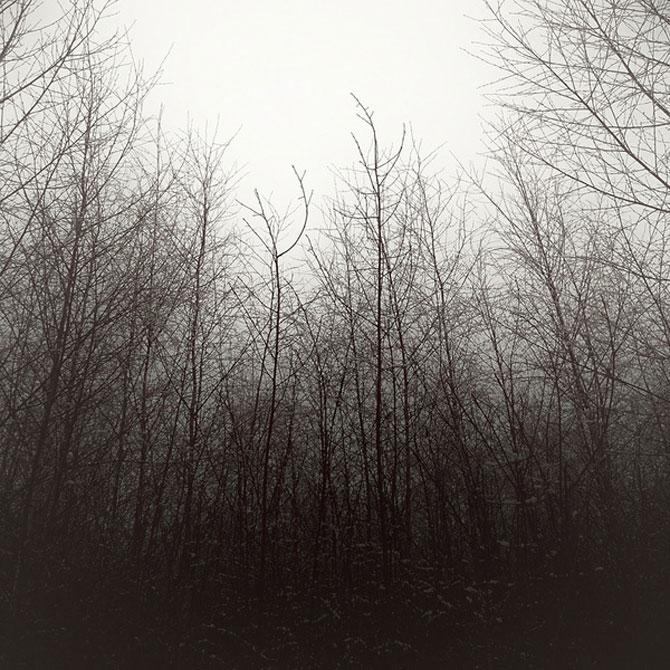 Minimal, conceptual, natural: Jurgen Heckel - Poza 6
