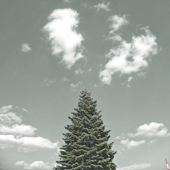 Minimal, conceptual, natural: Jurgen Heckel - Poza 11