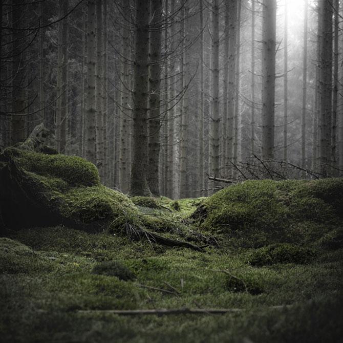 Minimal, conceptual, natural: Jurgen Heckel - Poza 12