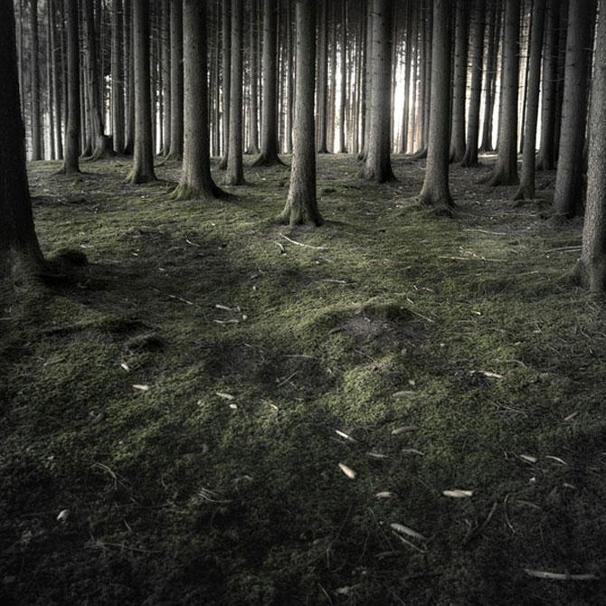 Minimal, conceptual, natural: Jurgen Heckel - Poza 14