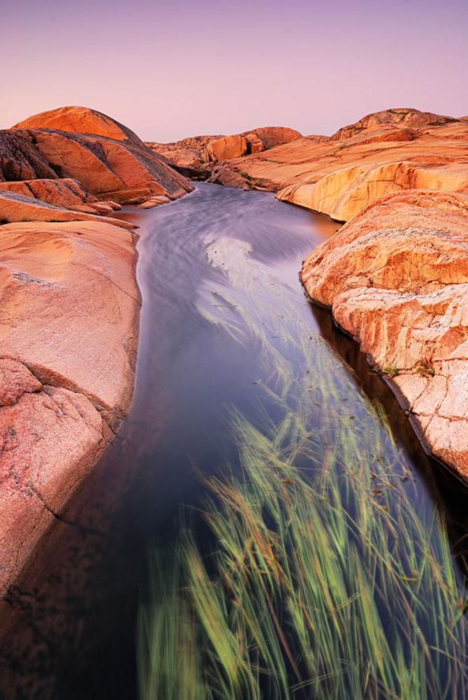 Natura de la macro la peisaj, cu Martin Amm - Poza 1