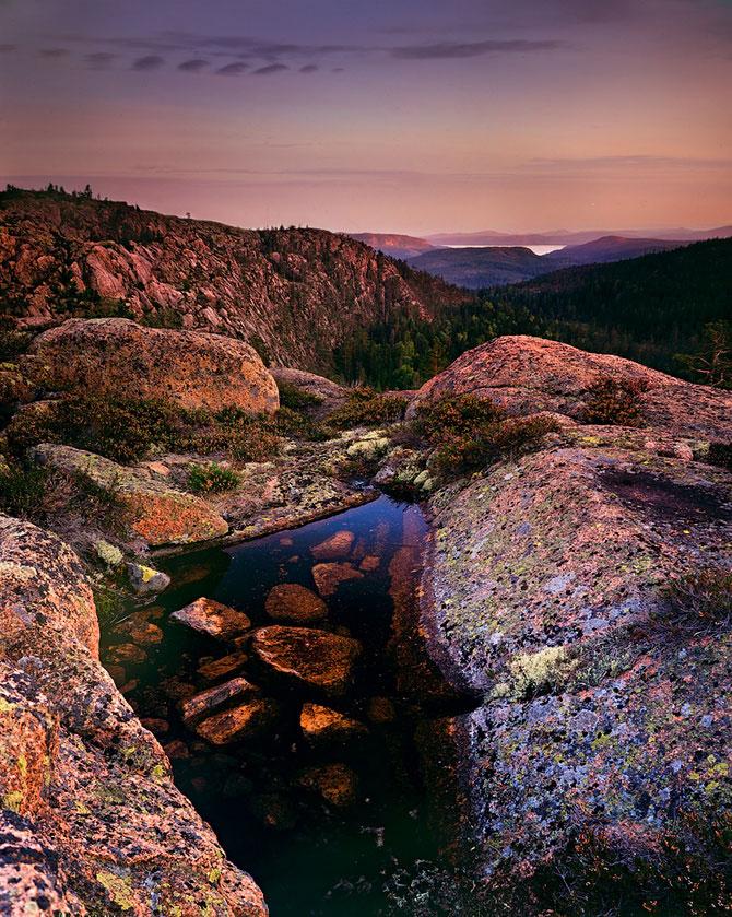 Natura de la macro la peisaj, cu Martin Amm - Poza 2