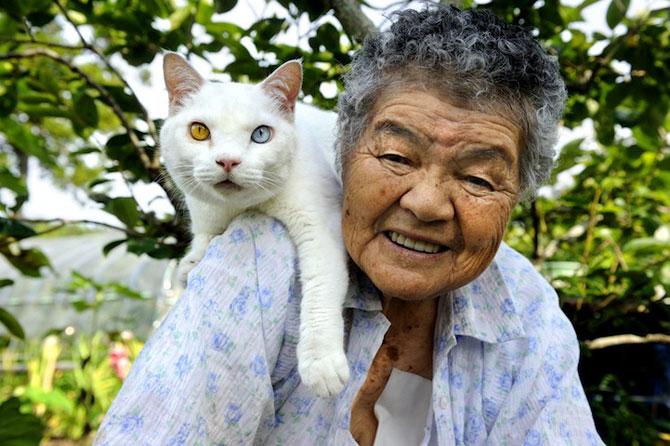 Bunica Misao si pisica Fukumaru, prietene de-o viata - Poza 1