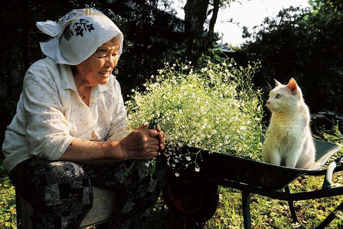 Bunica Misao si pisica Fukumaru, prietene de-o viata - Poza 2