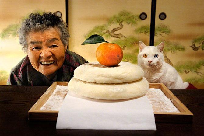 Bunica Misao si pisica Fukumaru, prietene de-o viata - Poza 3