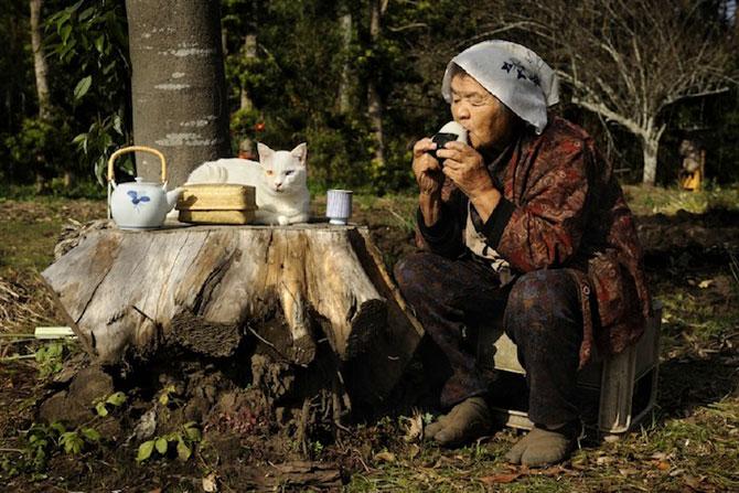 Bunica Misao si pisica Fukumaru, prietene de-o viata - Poza 7