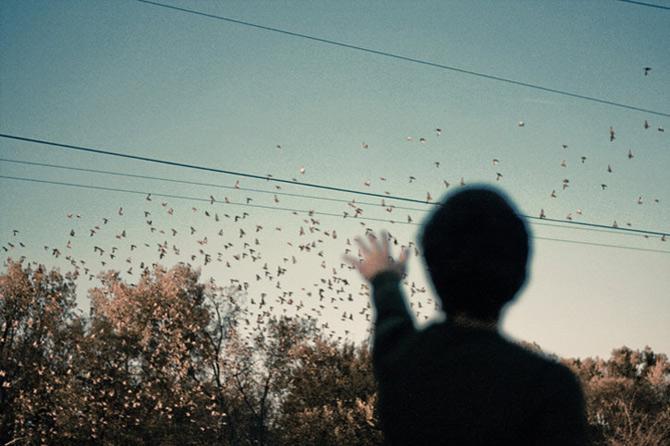Desprinse din visele lui Natalie Kucken - Poza 13