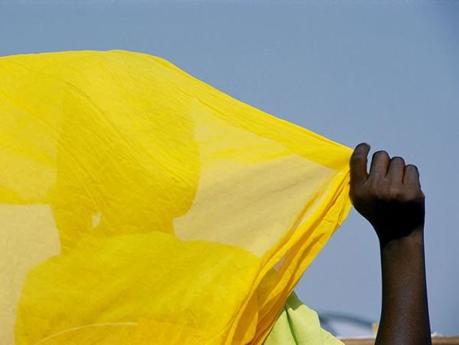 Viata in galben: National Geographic - Poza 13