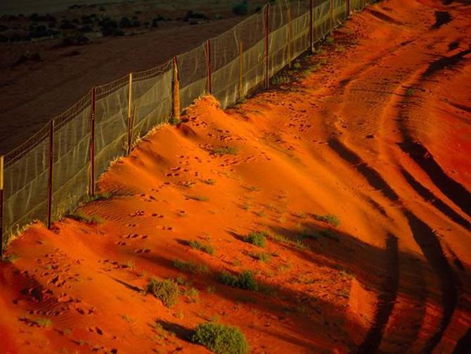 Viata in portocaliu: National Geographic - Poza 4